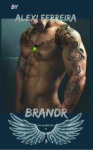 BRANDR 3